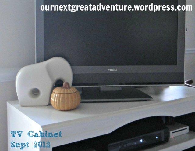 TV Cabinet Sept 2012