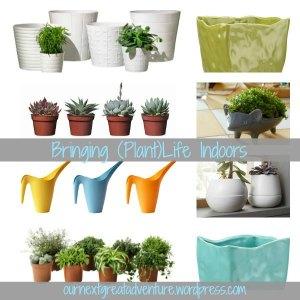 Bringing (Plant)Life Indoors - Favorite Finds