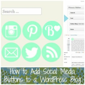 How to Add Social Media Buttons in WP