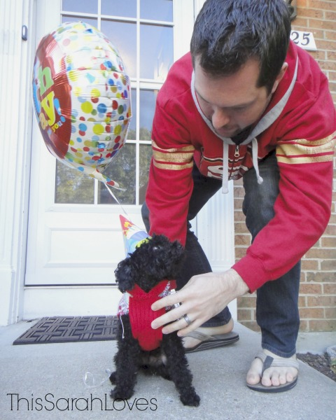 Penelope Poodle Turns 3 - If Looks Could Kill - #thissarahloves