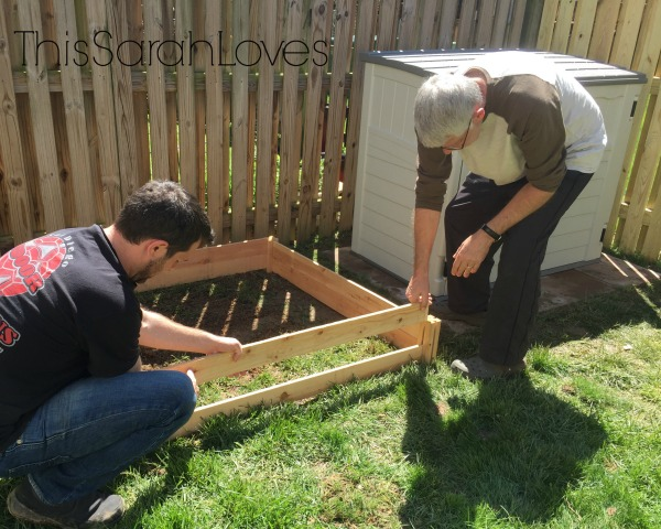 Backyard - Garden Bed Build